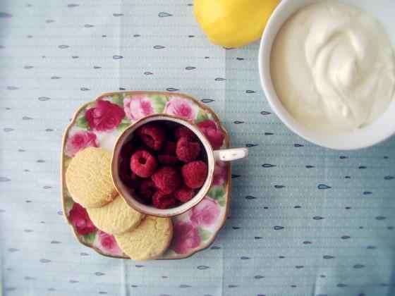 Talia's Treats : Raspberry Syllabub | Lani Says