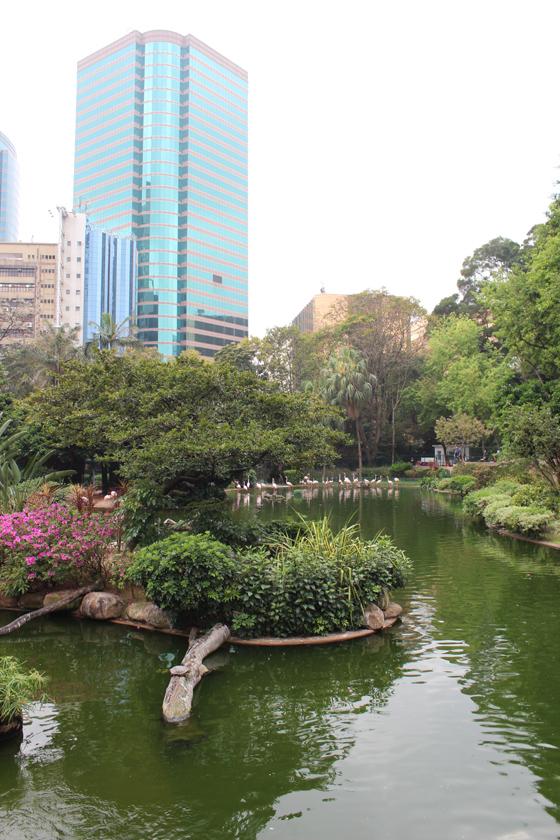 kowloon4